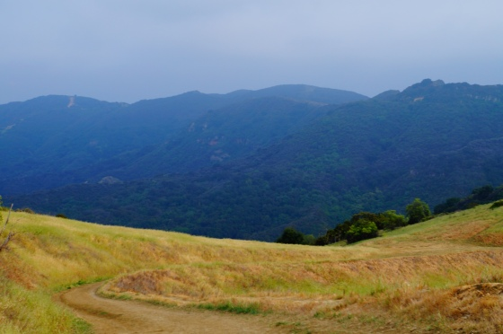 Short hike in Topanga