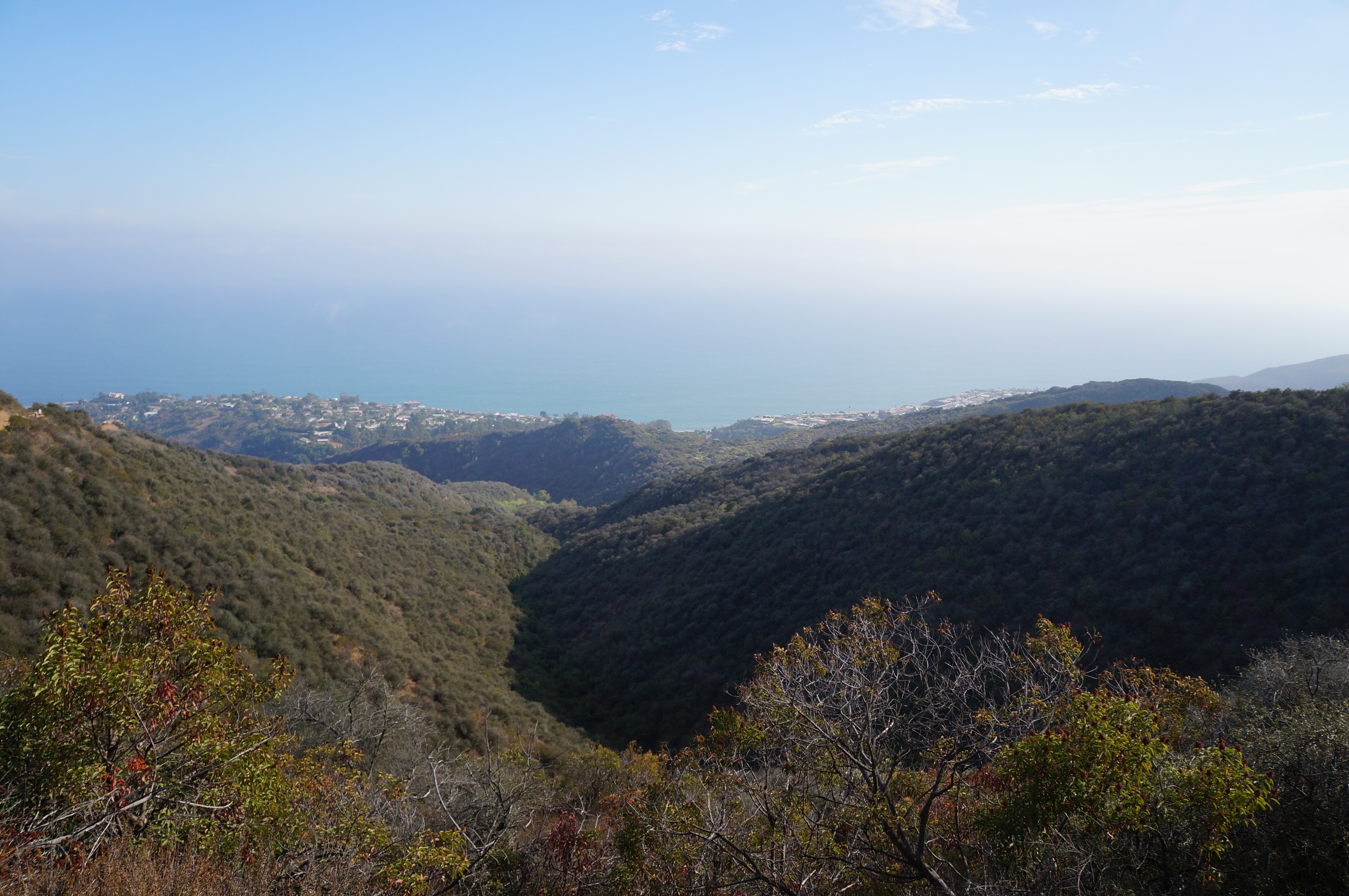 Los liones trail in pacific palisades california girl hiker for Where is pacific palisades